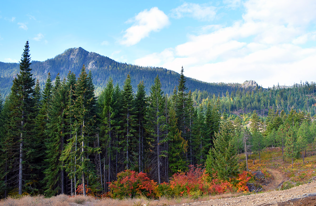 Mountain vistas in Washington